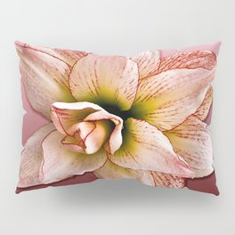 Amaryllis, Alone Pillow Sham