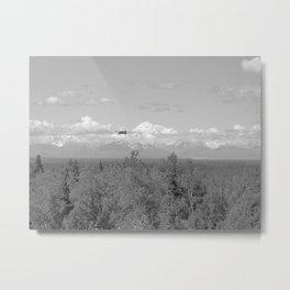 Denali Flying Metal Print