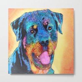 Rottweiler dog. Metal Print