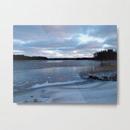 Icy Afternoon Metal Print