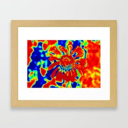 Abstract Zinnia Framed Art Print