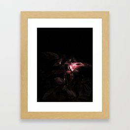 Nighttime in the Garden, 4 Framed Art Print