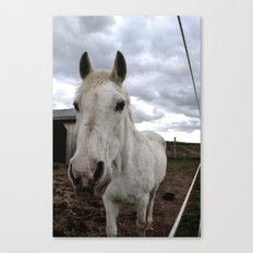 Up Close and Personal with Jenah Canvas Print