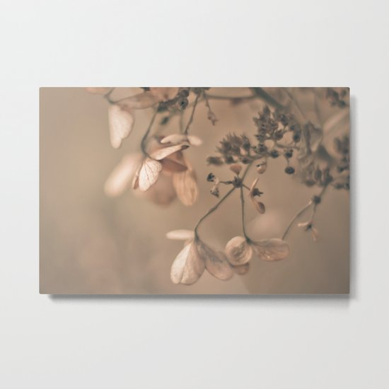 Daydream in Pink Metal Print