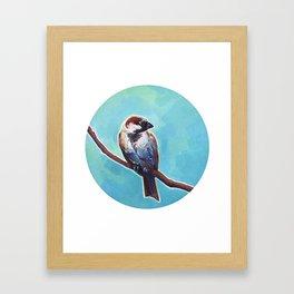 House Sparrow Framed Art Print
