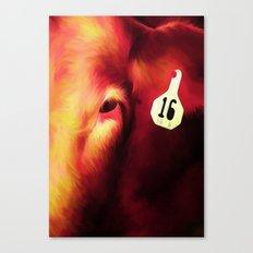 Cow 16 Canvas Print