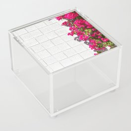 Bougainvilleas and White Brick Wall in Palm Springs, California Acrylic Box
