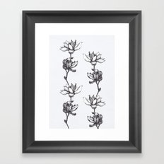 Magnolia in black and white Framed Art Print