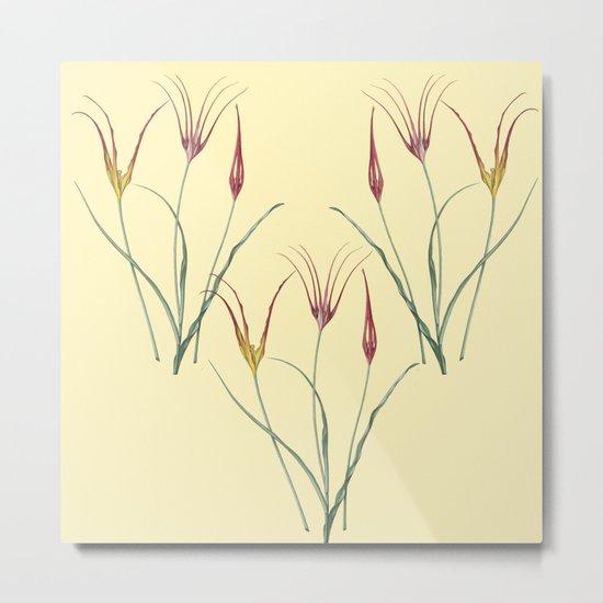 Tulip togetherness Metal Print