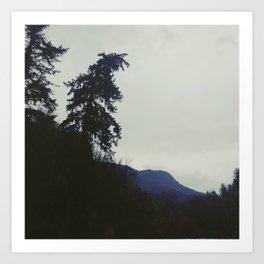 Fog in Millcreek Canyon Art Print