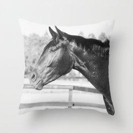 Black & White Stallion Throw Pillow