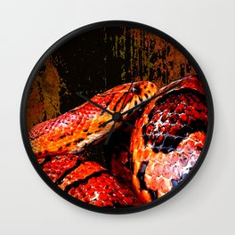 Grunge Coiled Corn Snake Wall Clock