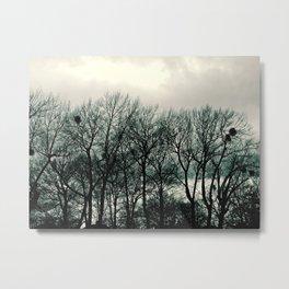 Birds Nest i Metal Print