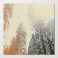 yosemite Canvas Prints featuring Yosemite by samantha lawson
