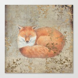 Red fox among thorns Canvas Print