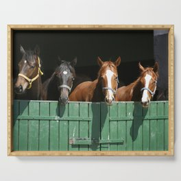 Close-up face of horses in stable.The horse is looking out from behind green wooden fence of the barn at rural animal farm summertime. Serving Tray