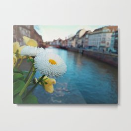white flower on the bridge Metal Print