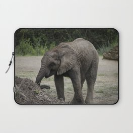 Baby African Elephant 1 Laptop Sleeve