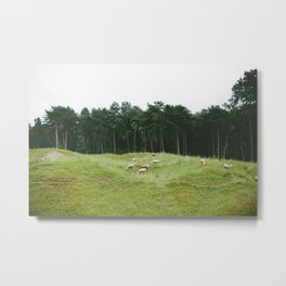 WWI Minefields. Metal Print