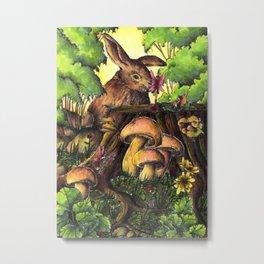 Woodland fairies Metal Print