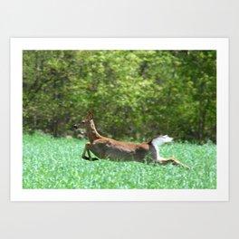 Run Forest Run Art Print