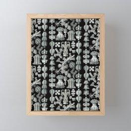Ernst Haeckel - Gorgonida Framed Mini Art Print