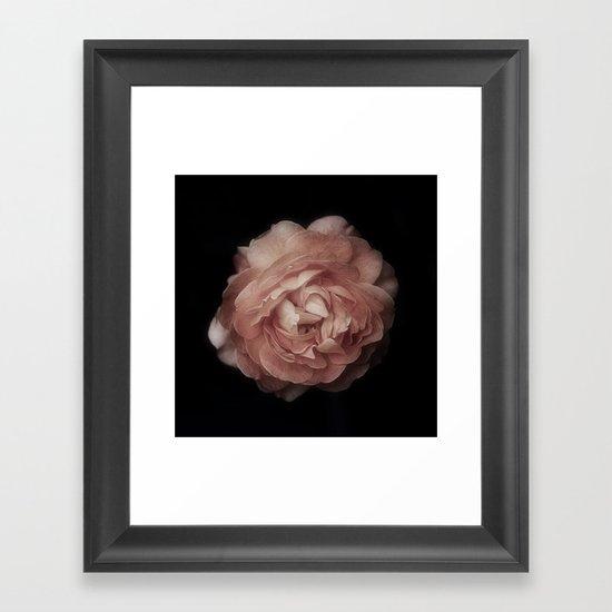 Rose in Black Framed Art Print