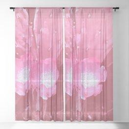 cactus blossom pw Sheer Curtain