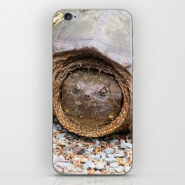 Snapping Turtle1-face forward iPhone Skin