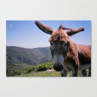 spain Canvas Prints featuring Spain by Christie MacLean