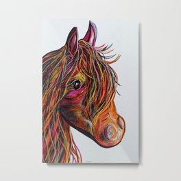 A Stick Horse Named Amber Metal Print