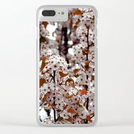 Hue Clear iPhone Case