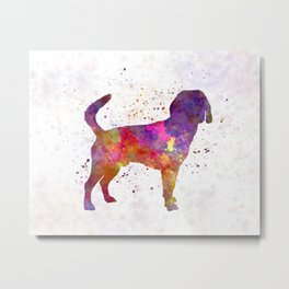 Beagle Harrier in watercolor Metal Print