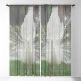 white peacock Sheer Curtain