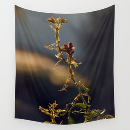Early Mornig Rose Plant Wall Tapestry