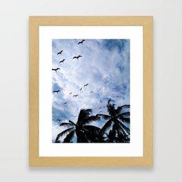 PALMS AND BIRDS Framed Art Print