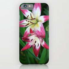 Three to go. iPhone 6s Slim Case