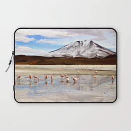 Pink Flamingos & a Peak in the Andes Laptop Sleeve