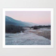 Frozen morning Art Print