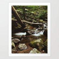 Hacklebarney State Park Art Print