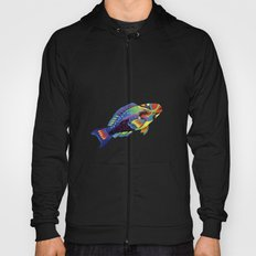 Rainbow parrot fish Hoody