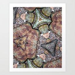 Rock Garden #1 Art Print