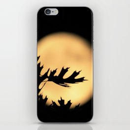 Outstretched Hands iPhone Skin