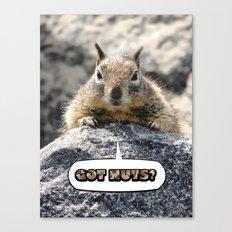 Got Nuts? Canvas Print