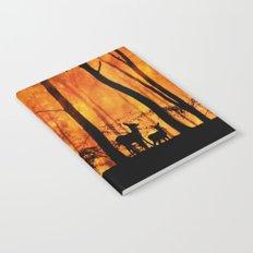 Forest fire Notebook