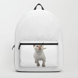 Flame Point Siamese Kitten Backpack