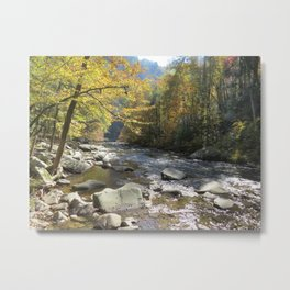 Autumn on the Little Rover Metal Print