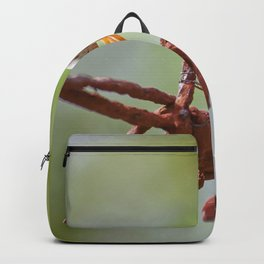 Nature in pastel shades Backpack