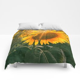 summer in the fields Comforters