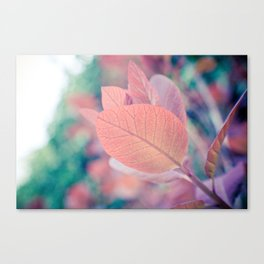 Natures Watercolor Canvas Print